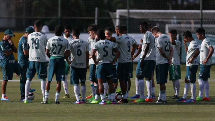 Palmeiras elenco (Foto: Cesar Greco / Ag. Palmeiras)