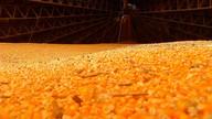Viabilidade da produção de etanol de milho é confirmada em MT