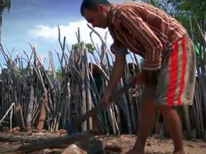 Agricultor corta árvores da caatinga para usar madeira no fogão à lenha (Foto: Reprodução/TV Paraíba)