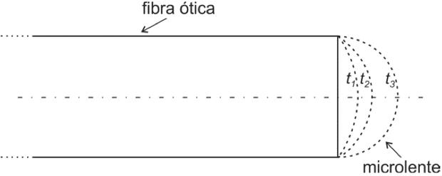 Ilustração da microlente (Foto: Reprodução/Fuvest)