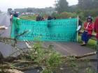 Protesto de índios bloqueia a BR-277, na Região Metropolitana de Curitiba