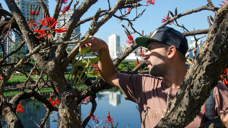 orquidea-projeto-marginal-alessandro-marconi (Foto: Divulgação)