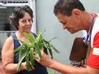 Santos, SP, realiza ação contra a dengue para moradores e turistas