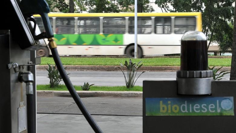 agricultura_biodiesel (Foto: Valter Campanato/Agência Brasil)
