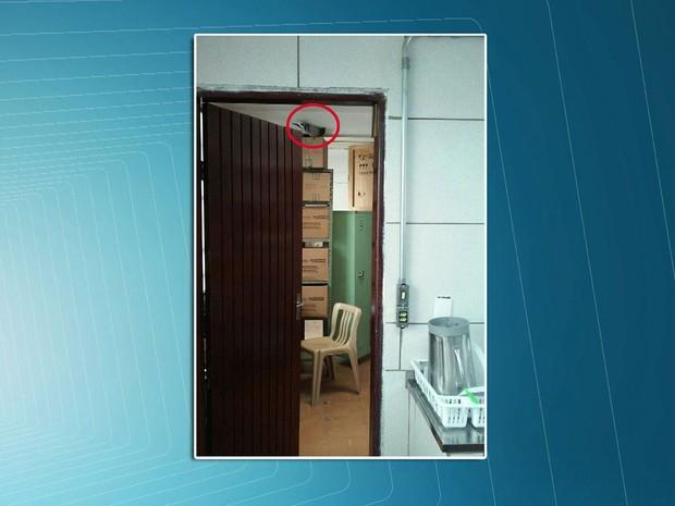 Em uma Etec foi encontrado um pombo dentro da sala onde as merendas são armazenadas (Foto: TV Globo/Reprodução)