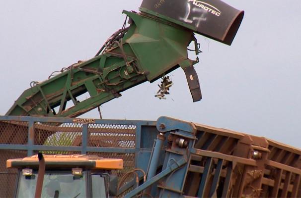 É época de colheita de cana na região (Foto: Reprodução TV Fronteira)
