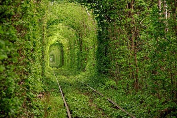 Túnel do amor, na Ucrânia, recebeu este nome devido aos encontros de jovens casais no local (Foto: Reprodução)