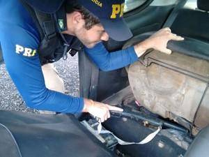 Polícia – Em Aurora do Pará, armas e munição sem documentação são apreendidas