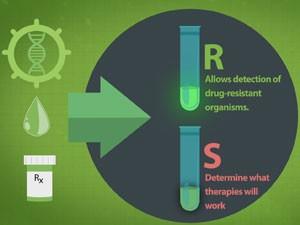 GeneWeave desenvolveu processo rápido que aponta melhor tratamento antibiótico. (Foto: Reprodução/GeneWeave)