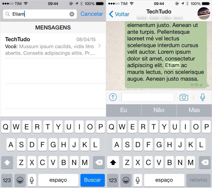 Pesquisando o conteúdo das mensagens (Foto: Reprodução/Helito Bijora)