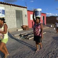 'Laranjas' são vítimas de esquema que desviou R$ 27 milhões de Canapi