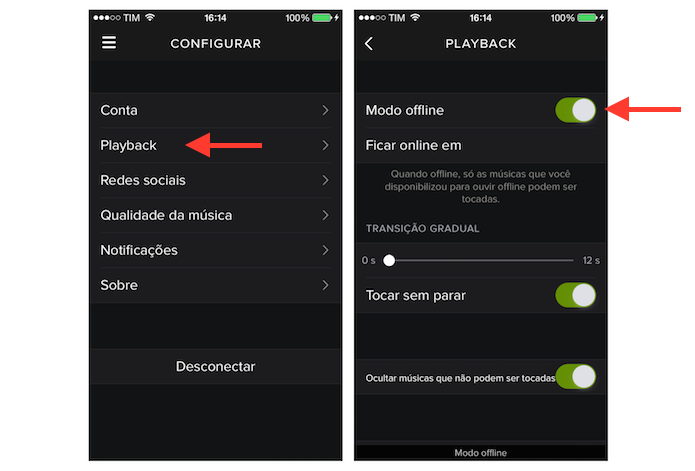 how to play music offline on spotify iphone
