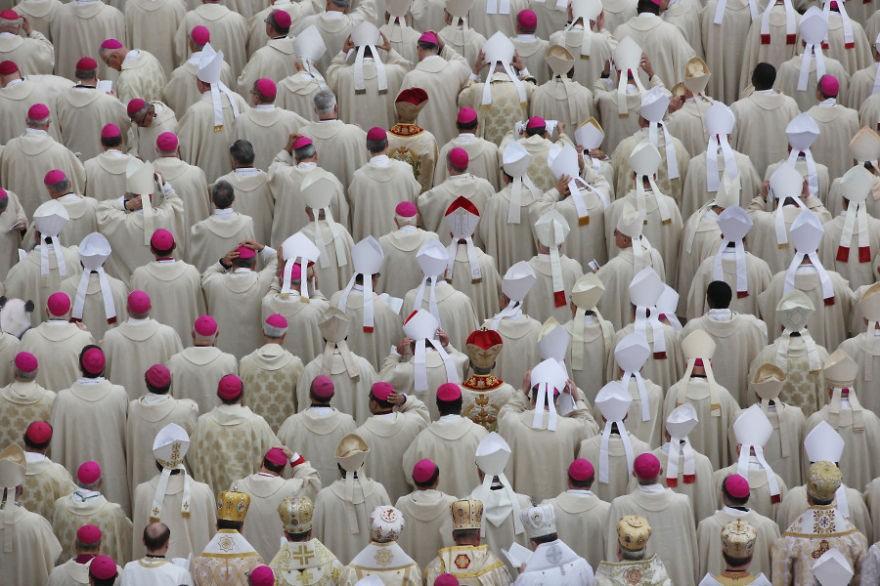 Encontre o panda entre os cardeais (FOTO: REPRODUÇÃO/ALONSO ARELLANO)