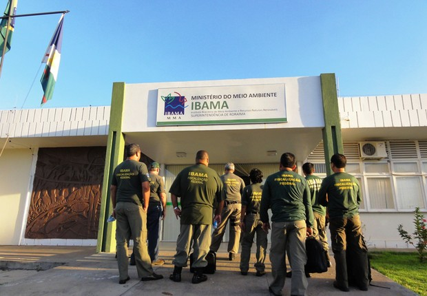 Ibama (Foto: Divulgação)