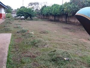 Pátio externo onde havia um matagal foi roçado e limpo (Foto: Júnior Freitas/G1)