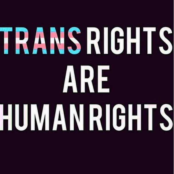 Direito Trans (Foto: Reprodução/Instagram)