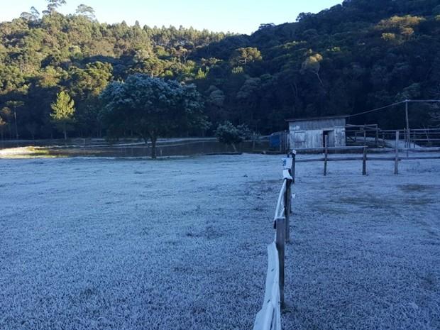 Segundo a Casa da Agricultura, frio atingiu 0°C na madrugada (Foto: Romeu Neto/ TV TEM)