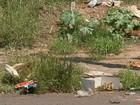 Moradores reclamam de lixo e terrenos abandonados em Bauru
