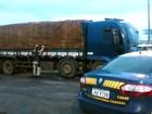 PRF apreende caminhão carregado de madeira irregular no Maranhão