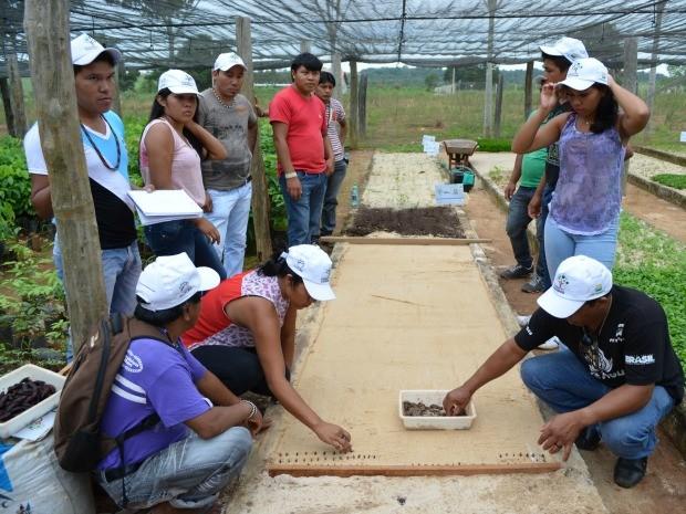 Participaram índios das etnias Cinta Larga; Suruí; Zoró; Arara e Gavião (Foto: Magda Oliveira/G1)