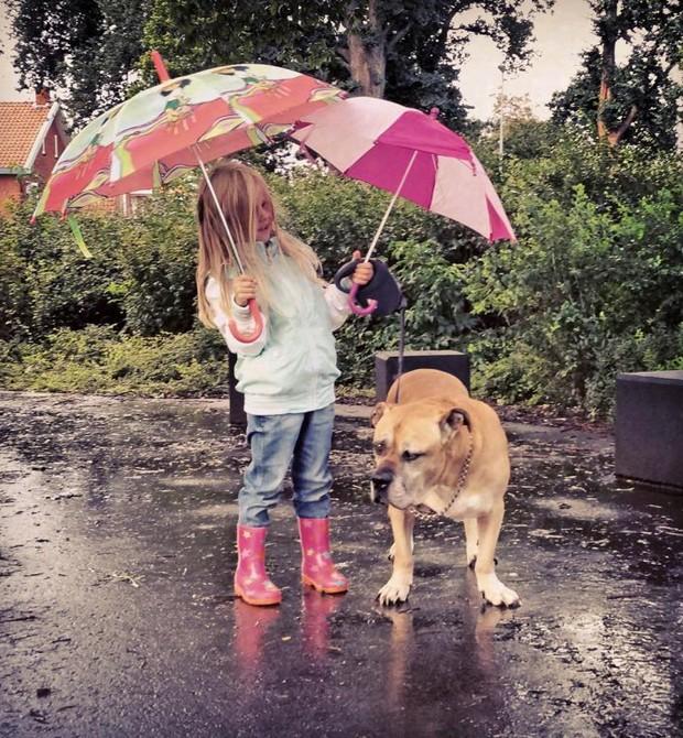 Amigos até debaixo de chuva! (Foto:  Caters)