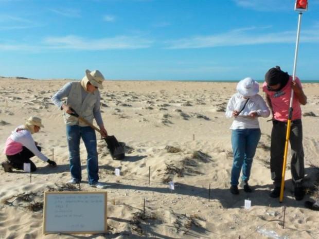 Equipe técnica trabalha nas dunas do município de Galinhos, no litoral Norte do RN (Foto: Divulgação/UERN)