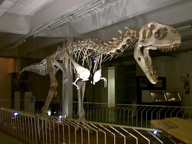 Réplica de dinossauro está exposta em museu de São Carlos (Foto: Paulo Chiari/EPTV)