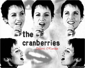 papel de parede cranberries