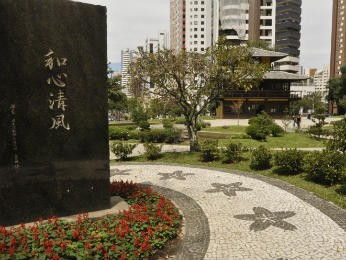 Audiência pública ocorreu nesta terça-feira, na Câmara Municipal (Foto: Anderson Tozato/Câmara Municipal de Curitiba/Divulgação)