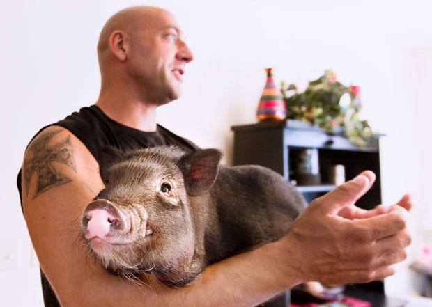 Shane Wilson ganhou uma animal de estimação improvável depois que recebeu um porco de presente de casamento (Foto: Marisa Wojcik/The Eau Claire Leader-Telegram/AP)