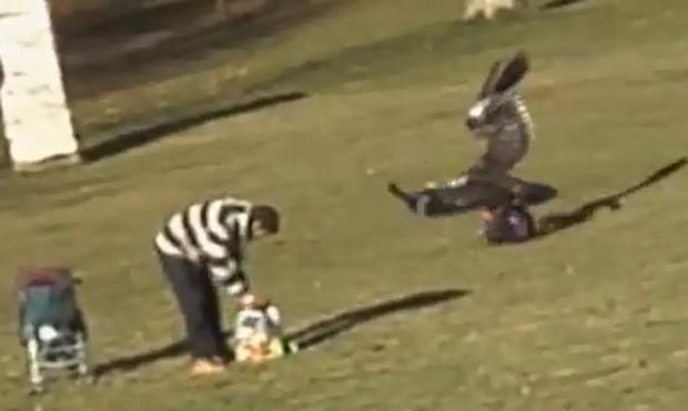 Vídeo falso foi filmado de longe, e gravação atingiu 447 mil visualizações (Foto: Reprodução)