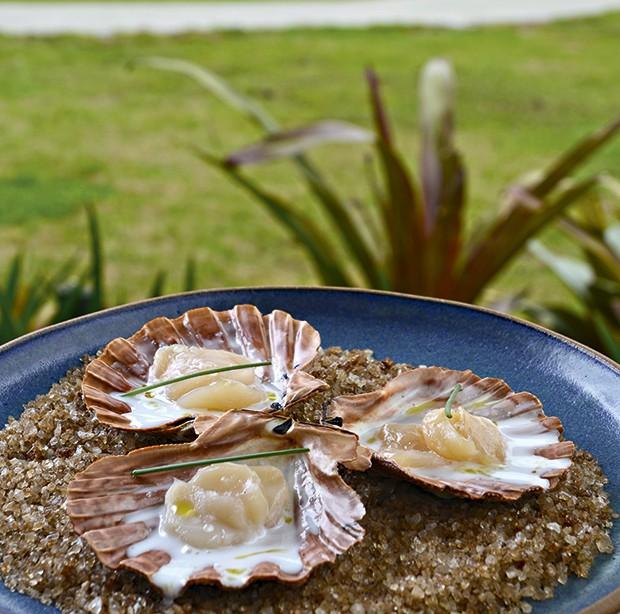 Vieiras do restaurante crudo (Foto: Camilla Maia)