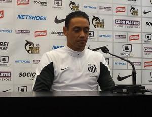 Ricardo Oliveira, atacante do Santos (Foto: Bruno Giufrida)