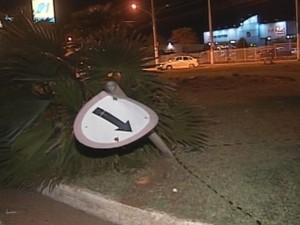 Placa foi derrubada pelo motorista (Foto: Reprodução / TV TEM)
