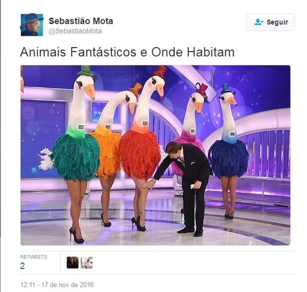 Memes sobre Animais Fantásticos e Onde Habitam (Foto: Reprodução / Twitter)