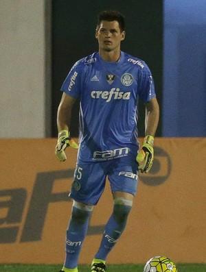 Vagner Palmeiras