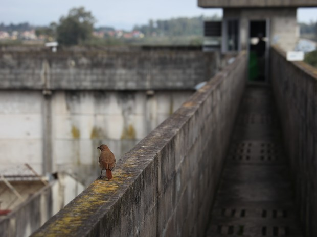 Penitenciária Modulada de Charqueadas RS (Foto: Judiciário/Divulgação)