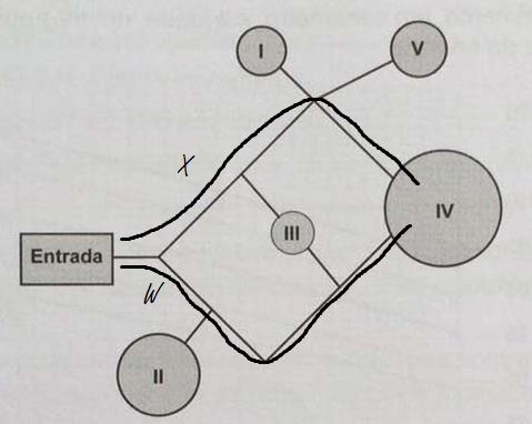 Matematica 3  (Foto: Poliedro)