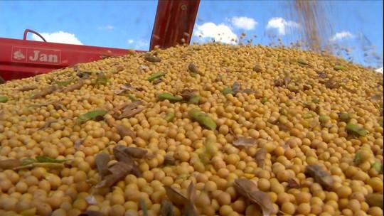 Condições climáticas colaboram para produção recorde de grãos