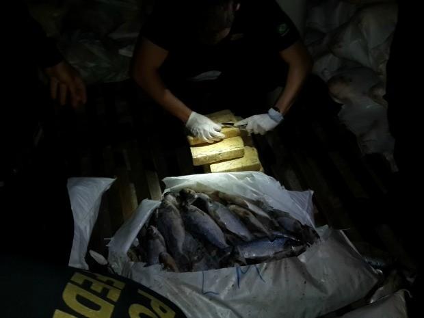 PF instaurou um inquérito policial para apurar caso (Foto: Polícia Federal/Divulgação)