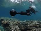 Google incorpora imagens de recife de coral no Street View