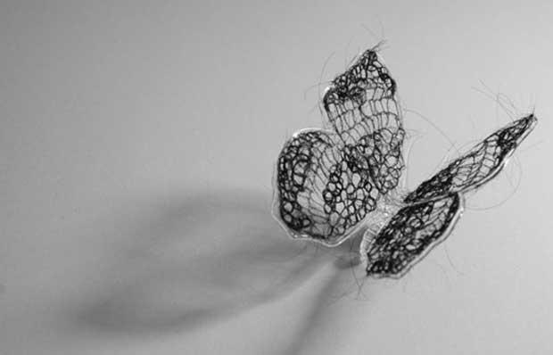 A vida dos insetos serve de metáfora para o desafio da cura de um câncer (Foto: Imhathai Suwatthanasilp)