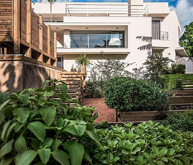 Horta | O canteiro de temperos tem hortelã, manjericão, sálvia, tomilho, salsinha e até verduras, em caixas de pínus, à altura das mãos (Foto: Alexandre Pottes Macedo)