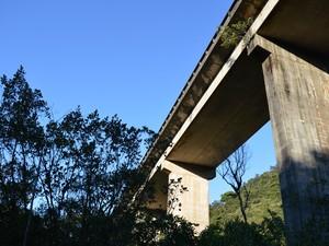 Viaduto tem cerca de 40 metros de altura e 360 de extensão (Foto: Camilla Motta/ G1 )