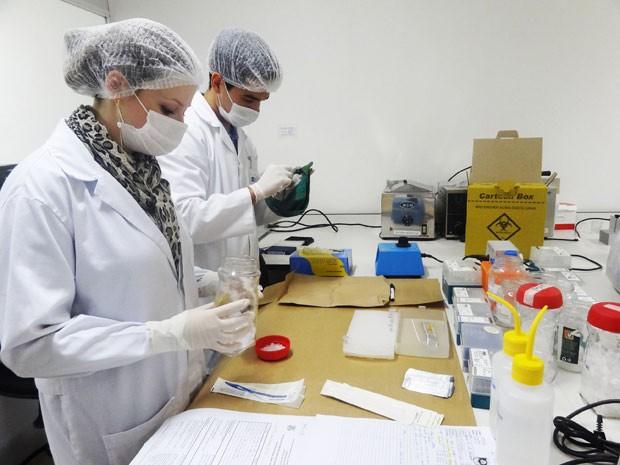 Peritos trabalham em amostrar retiradas de objetos encontrados pela polícia (Foto: Jessica Mello/G1)