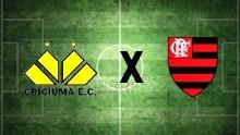 Criciúma x Flamengo (Foto: Arte TV Liberal)