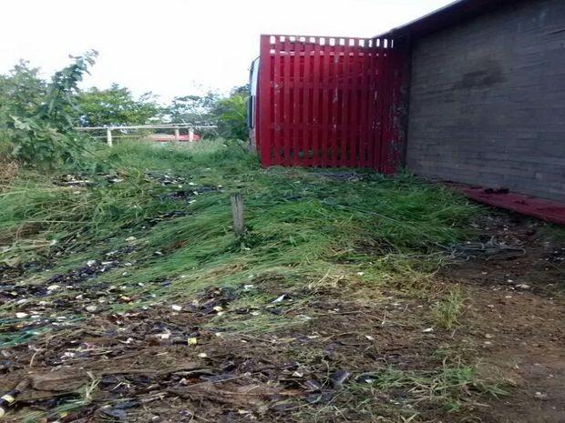 Um caminhão carregado com garrafas de cerveja tombou na BR-235 no município de Laranjeiras, a 23 km de Aracaju, por volta das 10h da manhã deste sábado (29). De acordo com a Polícia Rodoviária Federal (PRF), os agentes só foram informados do acidente por volta do meio-dia. As garrafas ficaram espalhadas pelo acostamento e não houve registro de feridos, apenas danos materiais. Até o meio da tarde o veículo ainda não havia sido retirado do local.  (Foto: Cleverton Macedo/ TV Sergipe)