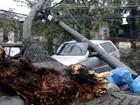 Dois dias após chuva forte, região de Piracicaba ainda tem 3 mil sem luz