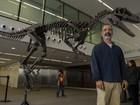 Dinossauro carnívoro de nova linhagem é descoberto na Argentina