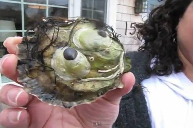 Em 2011, a norte-americana Eva Carbonaro, que mora em Yarmouthport, no estado de Massachusetts (EUA), decidiu não comer uma ostra, porque a iguaria apresentava uma forma que se assemelharia a um rosto humano. (Foto: Reprodução)